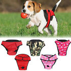 Dog Menstrual Pants Season Heat Adjustable Knicker Bitch Female Sanitary Diaper