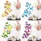 12pcs 3d Butterfly Rainbow Decal Wall Stickers Home Office Decorations