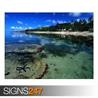 STARFISH ALONG THE CORAL (3316) Beach Poster - Poster Print Art A0 A1 A2 A3 A4