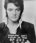 ELVIS PRESLEY PORTRAIT MUG SHOT GLOSSY POSTER PICTURE PHOTO mugshot memphis 564