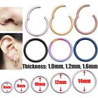 1PCS Titanium Hinged Segment Nose Rings Ear Cartilage Tragus Helix Lip Pierces image