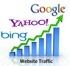 Bring 45 000+ Real Visitors, Targeted Web Visitors For 30 Days