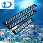 "24''36''48""Aquarium LED Full Spectrum Lamp 0.5W Multi-Color Freshwater Fish Tank"