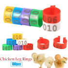 100PCS 16MM 001-100 Numbered Plastic Poultry Ducks Chicken Goose Leg Bands Rings