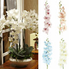artificial fake silk flower phalaenopsis butterfly orchid home decor uk