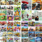 DIY Paint By Number Kit Acrylic Oil Painting Scenery  Flowers  Animals People