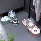 Elevated Pets Water Food Bowls Small Dogs Water Dispenser Twin Bowls Dish