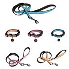 Dog Collar Lead Set With Dog Tag | French Designed | Choice Of Sizes & Colours