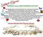 Sisters In Laws Are Forever Charm Bracelet Theme + 2x4 card poem organza bag