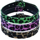 Plain Leopard Choker - Punk Rockabilly Rock Fetish Party Neckband Disco