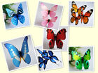 6pc 12pc 24pc 36pc 3D PVC Butterfly for Refrigerator Magnets Decoration 4""