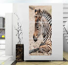 Portrait of Zebra Modern Decor wall clock Canvas Print Set Framed ready to hang