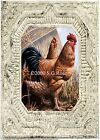 Tuscan French Country ROOSTER & HEN Antique Ceiling Tile Brdr Vintage ART PRINT