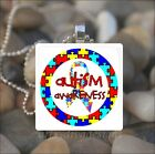 """AUTISM AWARENESS"" AUTISM PUZZLE PIECES RIBBON GLASS PENDANT NECKLACE KEYRING"