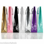 Luxury Gloss Paper Carrier Bags Gift Bags Party Bags Boutique Rope Handles
