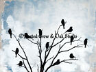 Blackbirds Tree Modern Cottage Chic Farmhouse Home Decor Matted Picture Usa A503