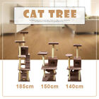 Cat Scratching Post Tree Gym House Condo Furniture Scratcher Poles Large