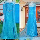 Princess Frozen Snow Costume Cosplay Adult Ladies Women Tulle Elsa Dress S-XL