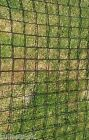 SM Scrog Net / Pond Netting / Trellis 4mm thick, superstrong PRICED PER METRE