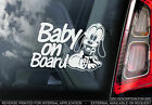 Baby On Board - Pluto Window Car Sticker -OPTIONS: Baby, Child, Kids, Puppy, Dog