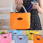 Portable Thermal Insulated Cooler Picnic Lunch Carry Tote Storage Bag Pack0004