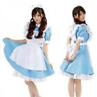 Anime Alice in Wonderland Sexy Cosplay Girl Lolita French Maid Costume Dress Hot