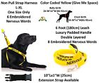 Dog Harness Non Pull Color Coded NERVOUS Yellow Warning Padded Handle Leash Set