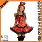 Womens Minnie Mouse Disney Ladies Mickey Corset Fancy Dress Costume All Sizes