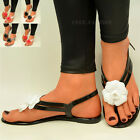 New Ladies Flat Jelly Sandals Womens Toe Post Flower Summer Flip Flops Size UK