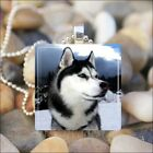 """SIBERIAN HUSKY DOG"" HUSKY WOLF DOG GLASS TILE CHARM PENDANT NECKLACE KEYRING"