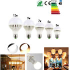 Wholesale E26 E27 110V 220V 3W 5W 7W 9W 12W Warm / Cool White LED Light Bulb