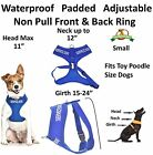 New Vest Pet Harness Non Pull Blue SERVICE DOG Padded Waterproof Front Back Clip