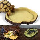 1Pc Reptile Tortoise Water Dish Amphibians Gecko Snakes Lizard Food Bowl Feeding