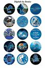 "DETROIT LIONS 1"" CIRCLES  BOTTLE CAP IMAGES. $2.45-$5.50  *****FREE SHIPPING**** $2.45 USD on eBay"