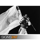 FREDDIE MERCURY QUEEN (1265) Photo Picture Poster Print Art A0 A1 A2 A3 A4