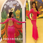 2016 Sexy Lace Long Sleeve Women Belly Dance Costume Long Slim Dress Back Off