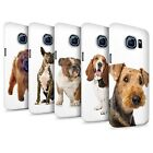 Dog Breeds Phone Case/Cover for Samsung Galaxy S6/G920