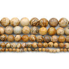 Natural Picture Jasper Round Beads 16'' 4mm 6mm 8mm 10mm 12mm 14mm 16mm