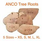 Anco ROOTS ~ 100% Natural Chews ~ Durable ~ Interesting ~ Available in 5 Sizes