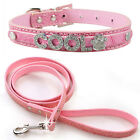 Dog Puppy Pet Personalized Name Collar & Matching Leash Set -5 color