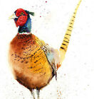 HELEN ROSE Limited Print of my PHEASANT original watercolour painting 200