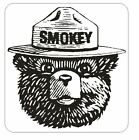 Forest Service Smokey The Bear Sticker Decal M146