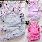 Toddler Kids Baby Girls Autumn Outfits Clothes T-shirt Tops Dress+Pants 2PCS Set