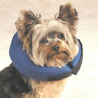 Inflatable Dog E Collar Surgery Recovery Cone Total Pet Health Vet Approved