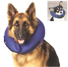 Inflatable Dog Surgery Recovery E Collar Total Pet Health Veterinarian approved