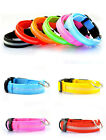 USB Rechargeable Flashing Adjustable Safety Nylon LED Dog Collar+Leash Charged