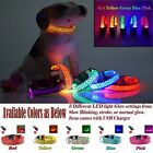 Blinking LED Night Light Flashing Glow Adjustable Pet Dog/Cat Collar,USB Charger