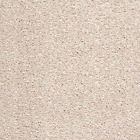 SPLENDID SAXONY Ivory Cream Stainclear Carpet Felt Back Lounge Bedroom Stairs