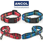 Ancol Tartan Dog Collar Red Blue Green Purple Lead Puppy Highland Stylish  Pet