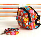 Outward Small Puppy Bags Dog Backpacks Harness Lead Set for Hiking Food Carrier